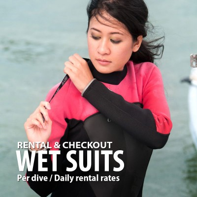 Wet suit rental