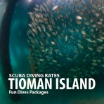TIOMAN ISLAND SCUBA DIVING RATES